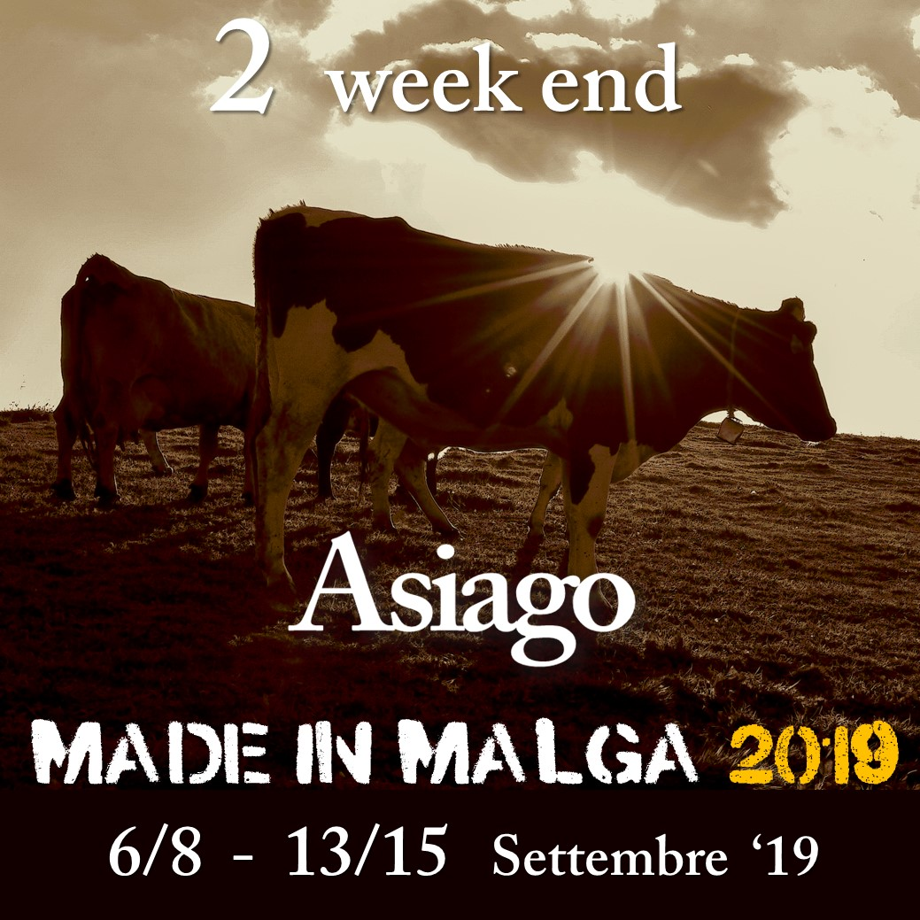 made-in-malga_2019